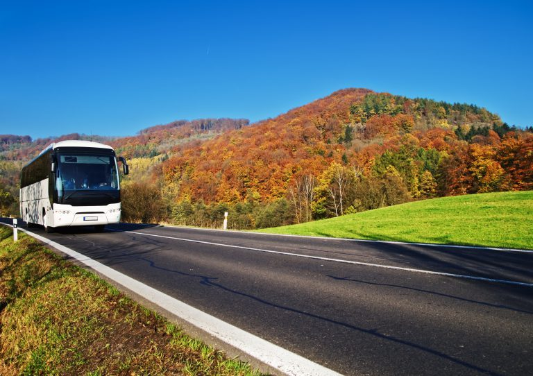 Paratransit Scheduling Solutions